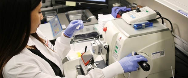 photo of a Histologist at work