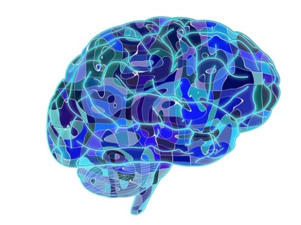geometric-brain