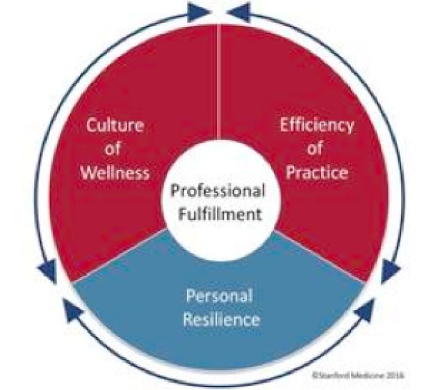 Wellness Curriculum