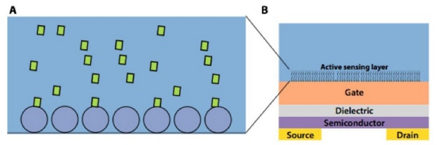 biochemical-sensing-platform
