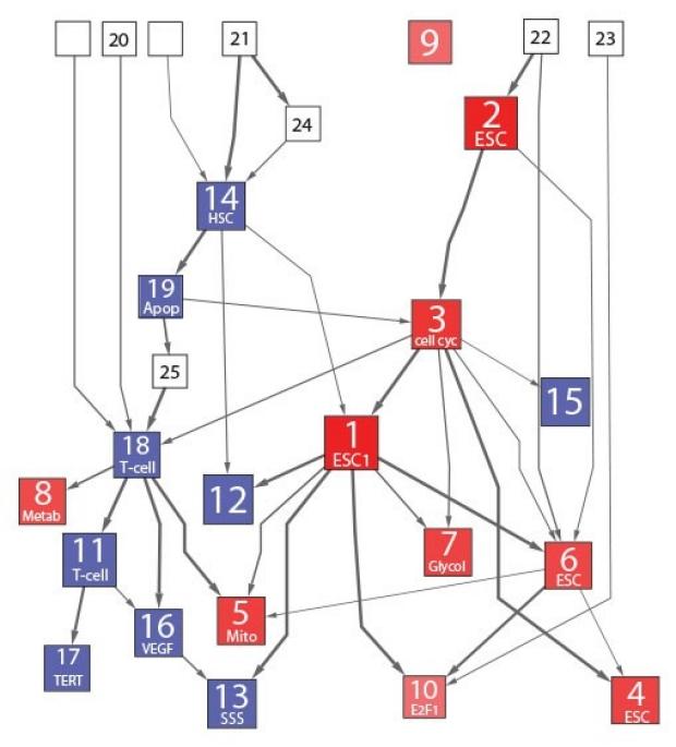 biomarkers-biological-processes-1