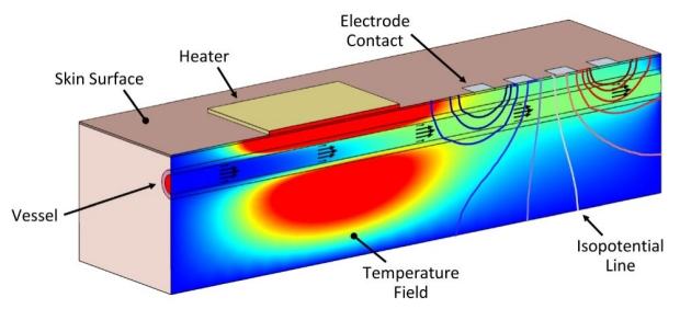 Illustration of impedance spectroscopy