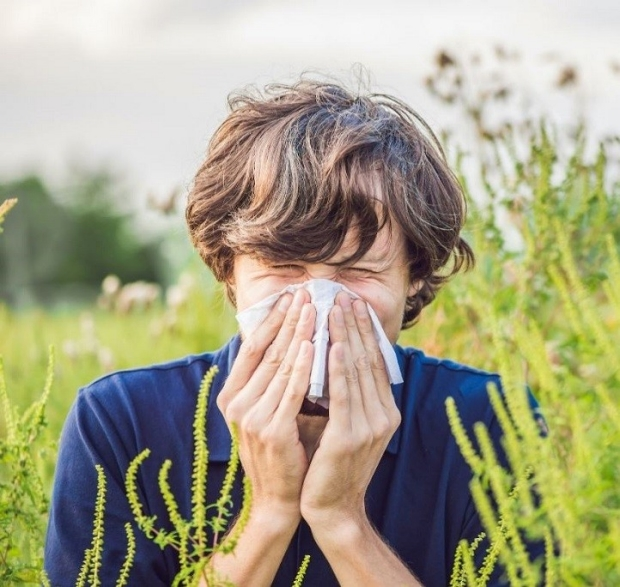 Allergies Photo Credit: Elizaveta Galitckaia