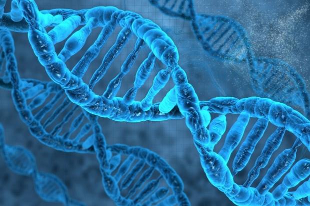 genome_editing