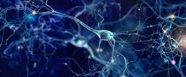 Multiple System Atrophy Survey Neuron Banner