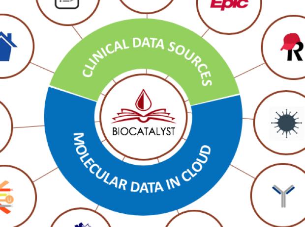 BioCatalyst Engine