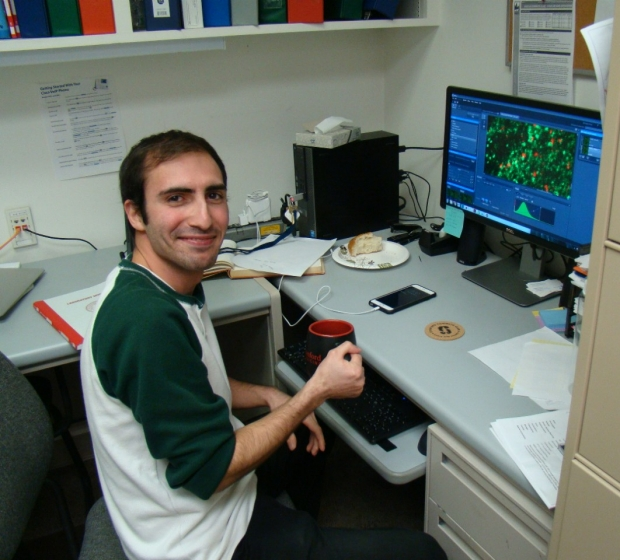 Reza Moein Taghavi: Research Assistant
