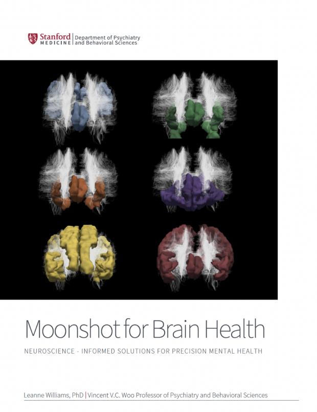 Precision Mental Health brochure
