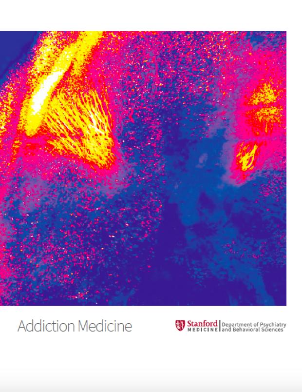 Addiction Medicine brochure