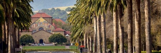 Palm drive Stanford