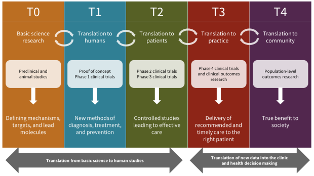 Operational phases of translational research in greater detail