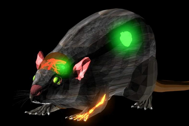Stanford Radiology Research Publishes First Clinical Translatable NIR-II Fluorescent Dye