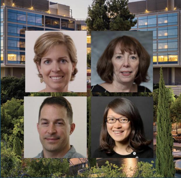 Stanford Bio-X Seed Grants Recipients