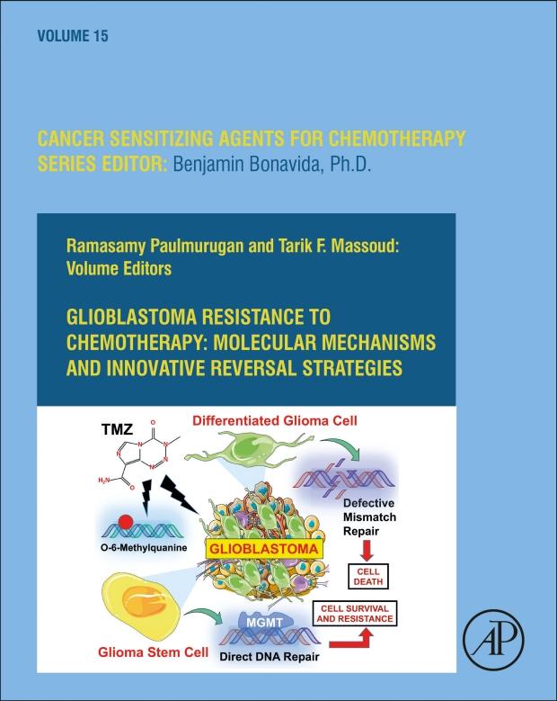 Ramasamy Paulmurugan, PhD and Tarik Massoud, MD, PhD Publish Glioblastoma Resistance to Chemotherapy: Molecular Mechanisms and Innovative Reversal Strategies