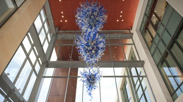 Stanford Institute for Stem Cell Biology and Regenerative Medicine