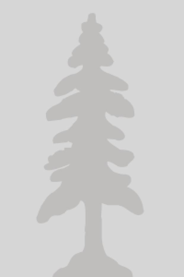 marta-krupa-plonowska