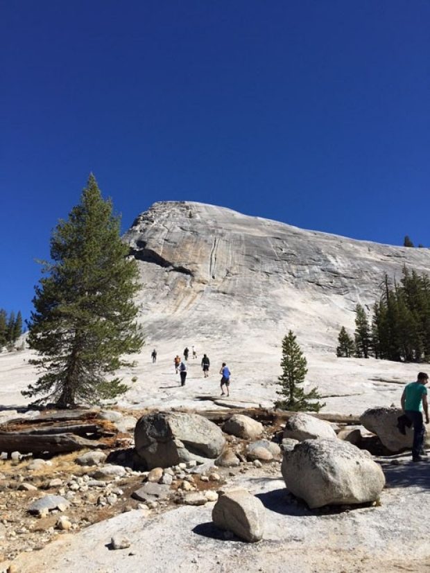 Yosemite_2017_1-500