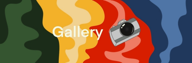 camera for the gallery