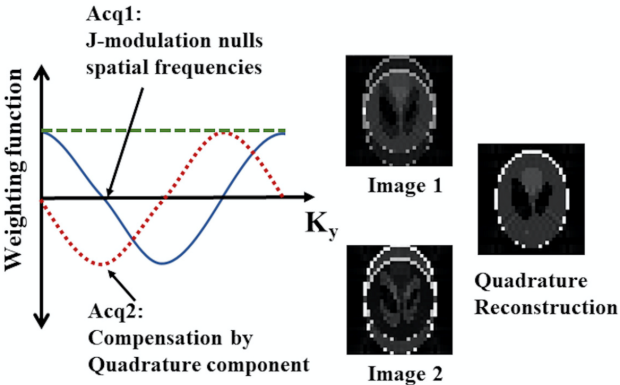 MRI of [2-13C] Lactate without J-coupling artifacts