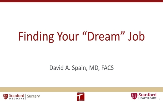 Pages-from-Dream-Job_Dr.-David-Spain.pdf