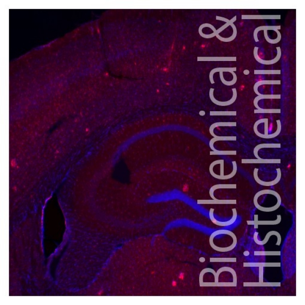 Biochemical and Histochemical models