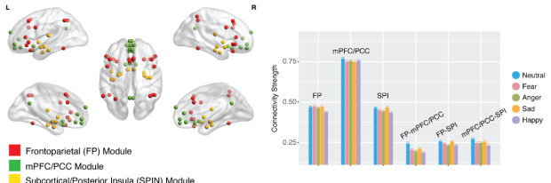 big data emotional circuit development