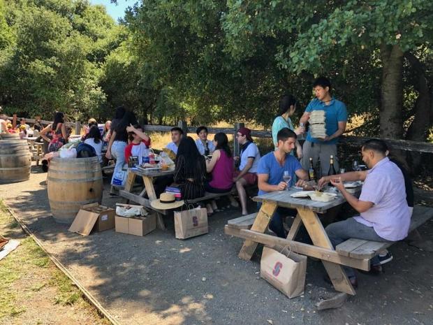 summer-picnic-2019-7