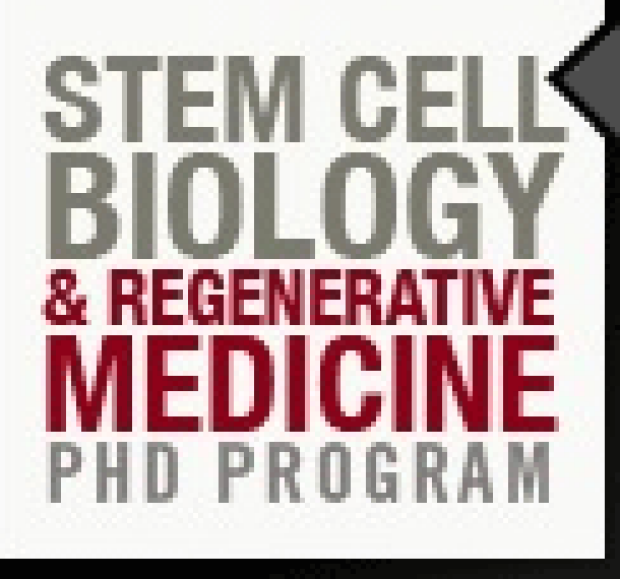 Stem Cell Biology program logo
