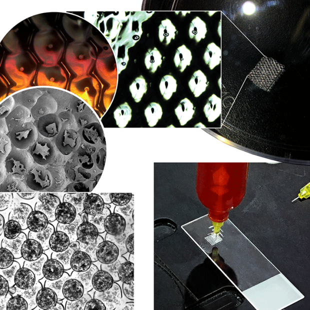 3D bioprinting of functional liver tissue
