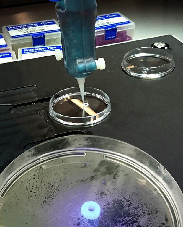 Snapshot demonstrating bioprinting of a cardiac tube