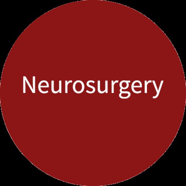 Stanford Neurosurgery