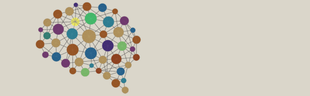 Colorful network graphic