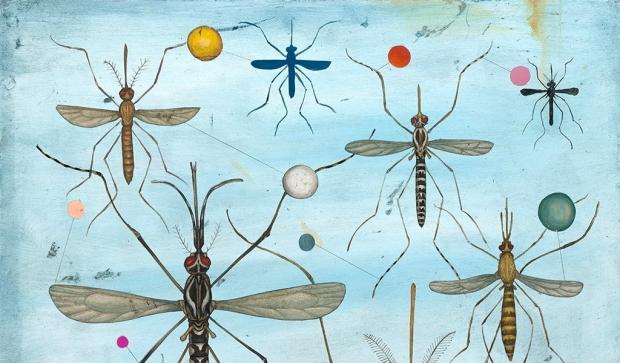 Mosquitos-w19-TOC
