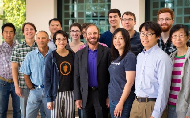 Steinberg Lab Group 2017
