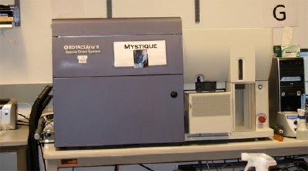 mystique400