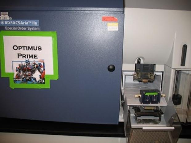 optimus400