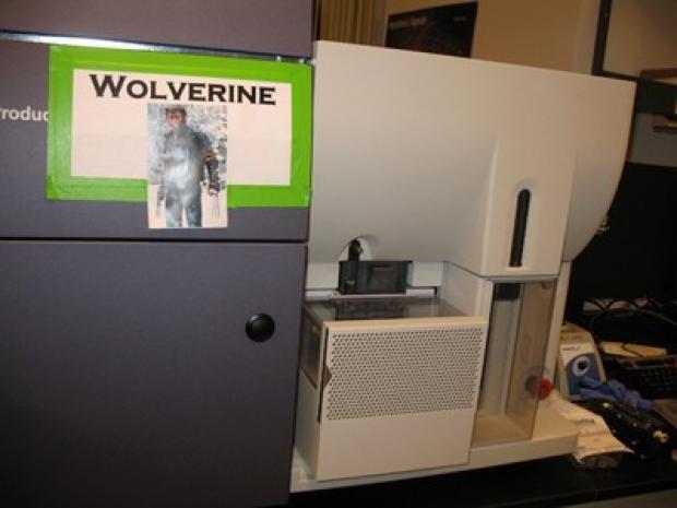 wolverine400