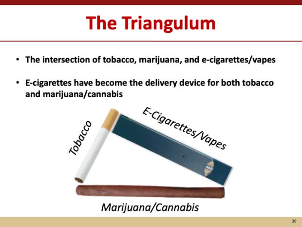 triangulum infographic