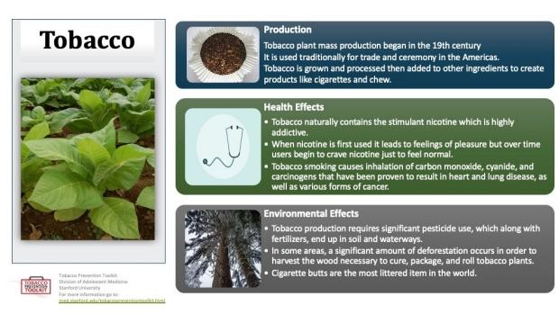 Tobacco-Factsheet