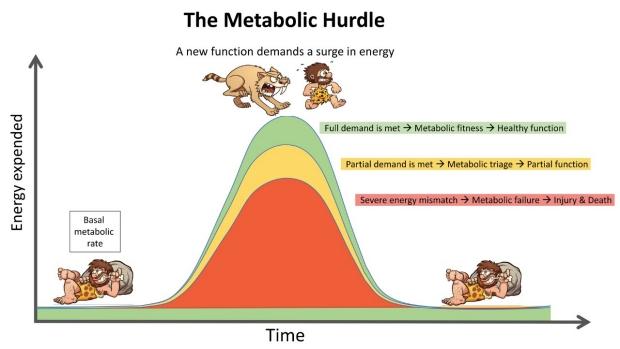 The Metabolic Hurdle
