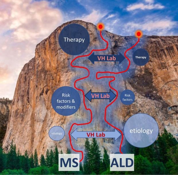 ALD & MS roadmaps