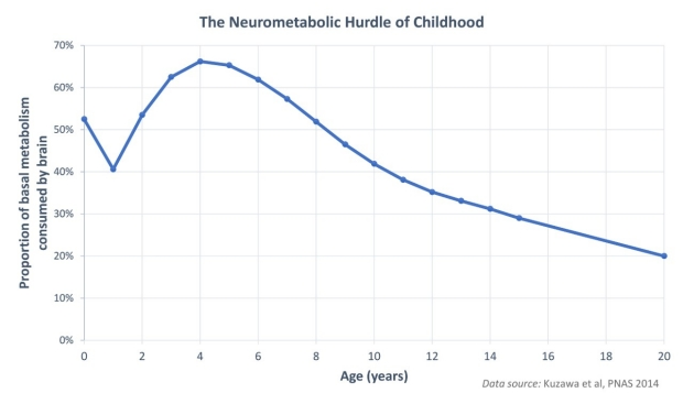 Neurometabolic hurdle of childhood