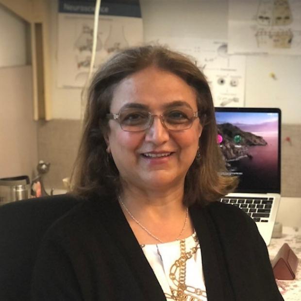 Ezzat Hashemi, PhD