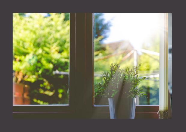 window with sunny scene