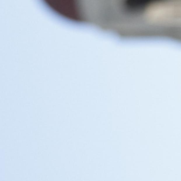 Vinicio de Jesus Perez, MD