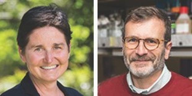 Edda Spiekerkoetter, MD & Ross Metzger, PhD