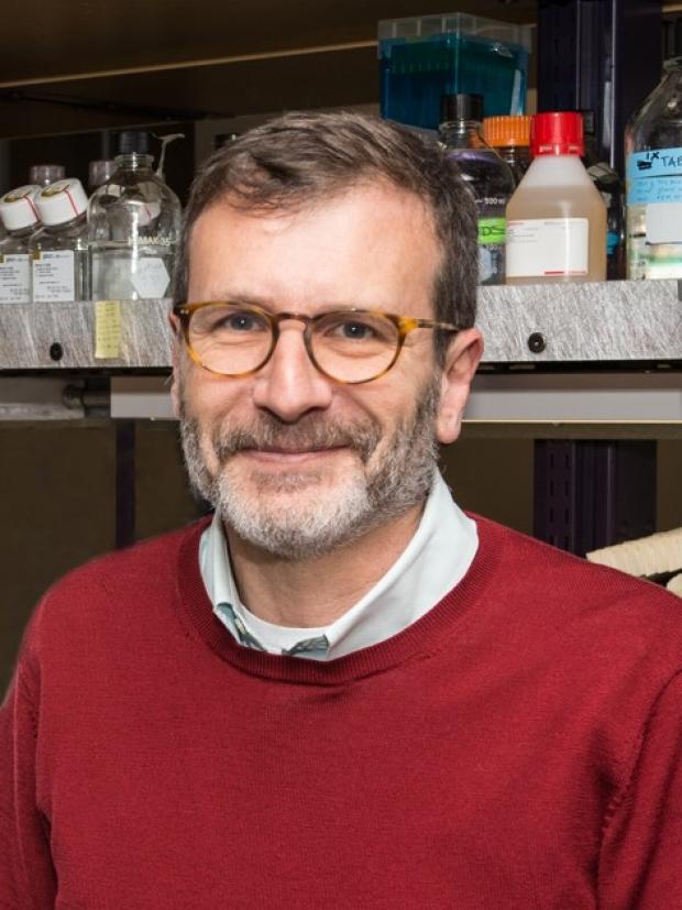 Ross Metzger, PhD