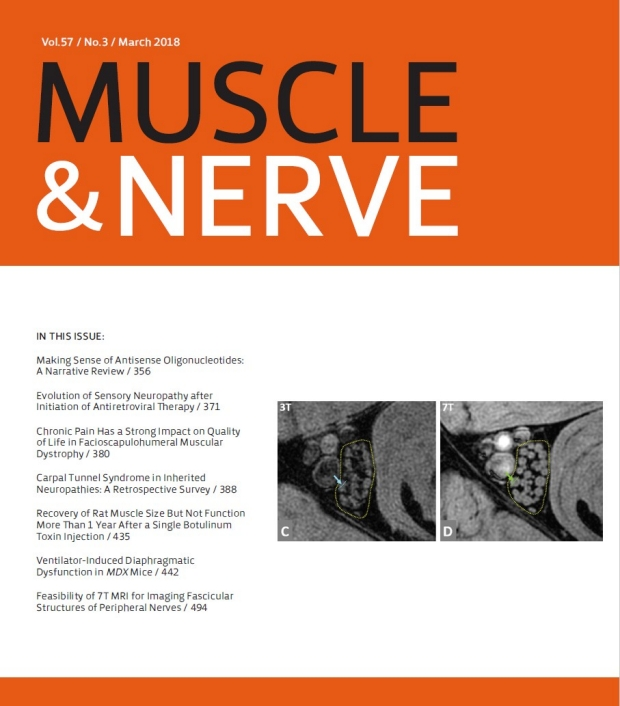 Muscle & Nerve Cover Image