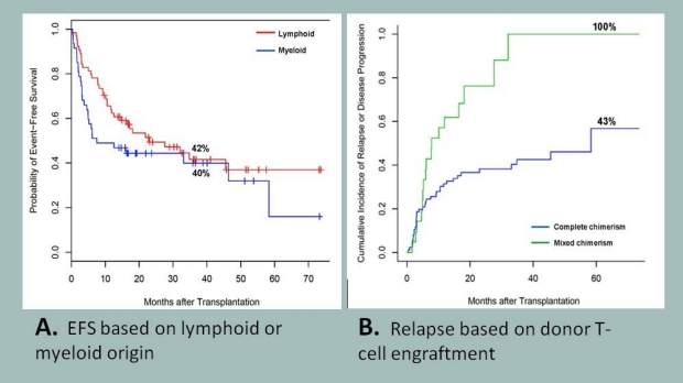 A Non-Myeloablative Allogeneic Transplant Becomes the Ultimate ImmunoTherapy
