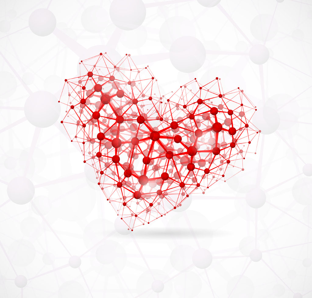 Precursor cells discovered that could help regrow heart ...